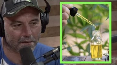 """Joe Rogan """"CBD is One of the Best Things I've Ever Tried for Anxiety"""""""