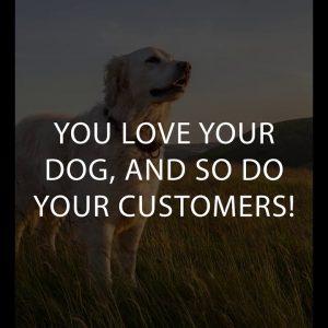 CBD for Pets!
