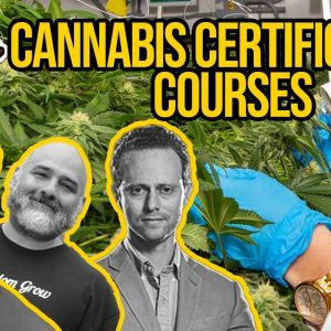 Cannabis Education | The Ganjier Certification | Green Flower's Max Simon | Cannabis Certification