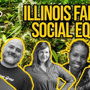 Illinois Cannabis Essentially Suspends Social Equity