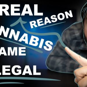 THE REAL REASON CANNABIS BECAME ILLEGAL