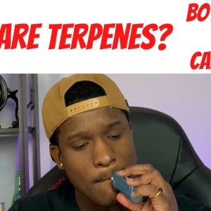 What Are Terpenes? Cannabis Derived v Botanical Derived Terpenes