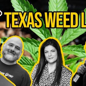 Texas Marijuana Laws   Is Weed Legal in Texas?   Weed in Texas with Texas NORML and DFW NORML