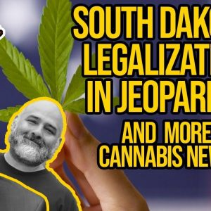 Cannabis Stocks Surge Due to Reddit, South Dakota Judge Rejects Marijuana Amendment
