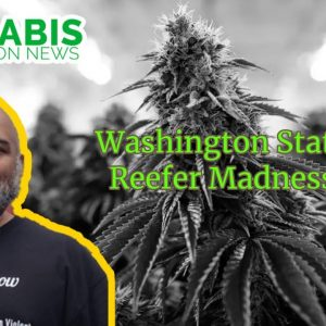 Washington State Reefer Madness HB1463