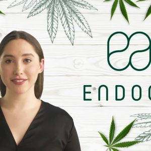CBD Calculator