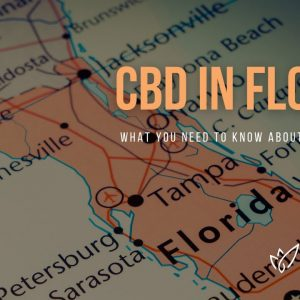 CBD Florida | Buy CBD Oil in Florida | Best CBD Oil Florida | Verlota Inc