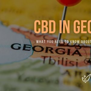 CBD Georgia | Buy CBD Oil in Georgia | Best CBD Oil Georgia | Verlota Inc