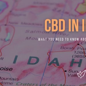 CBD Idaho | Buy CBD Oil in Idaho | Best CBD Oil Idaho | Verlota Inc