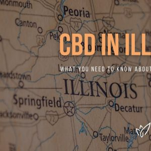CBD Illinois | Buy CBD Oil in Illinois | Best CBD Oil Illinois | Verlota Inc