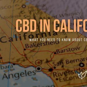 CBD California | Buy CBD Oil in California | Best CBD Oil California | Verlota Inc
