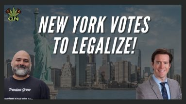 New York Votes to Legalize Marijuana
