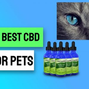 Where To Buy Cbd Oil In Vancouver - Where To Buy Cbd Oil In Canada Vancouver Check It Out!