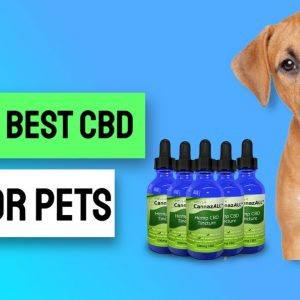 Cbd Hemp Oil Uk Holland And Barrett - Cbd Oil Uk Buy Holland And Barrett ❤👌❤