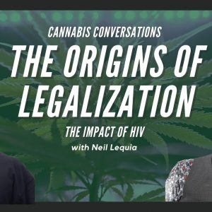 How AIDS Activists Started the Medical Marijuana Movement | Medical Marijuana and the AIDS Epidemic