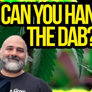 Cannabis Conversation With Scott McKinley, creator of The Dab Roast