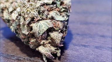 """"""" Northern  Lights """"  from ( jk Distro )"""