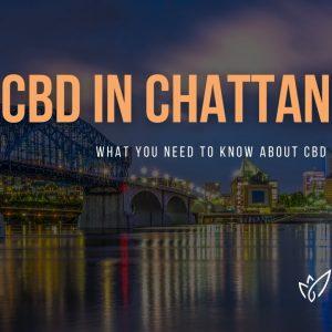 CBD Chattanooga | Buy CBD Oil in Chattanooga | Best CBD Oil Chattanooga | Verlota Inc