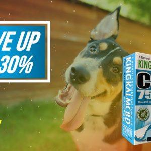 Cbd For Pets Companies, Cbd Oil For Pets Red Deer, Diamond Cbd For Pets