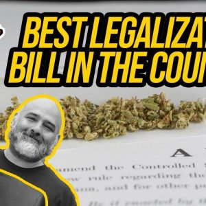 """Minnesota House to Vote on """"Best Legalization Bill in the Country"""""""