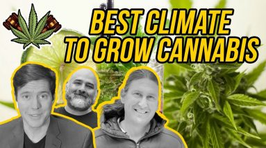 Best Places to Grow Weed | The Best Places To Grow Marijuana Outdoors