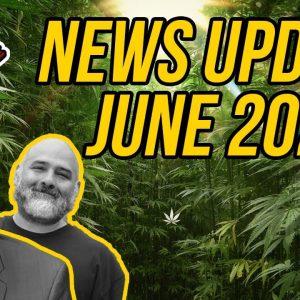 Federal Cannabis Legalization News - June 2021 - Cannabis News Roundup