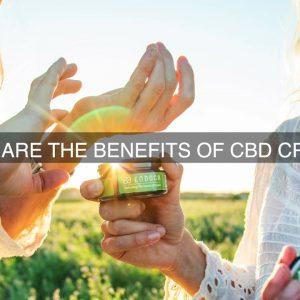 What Are The Bnefits Of CBD Cream?