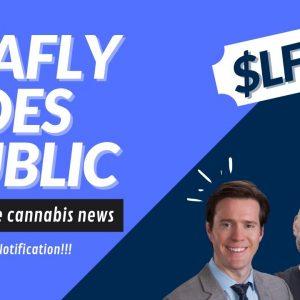 Leafly Goes Public | Cannabis Stock News 2021