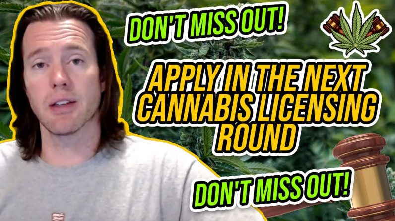 Why You Must Apply in the Next Cannabis Licensing Round | Don't Miss Out on your cannabis business