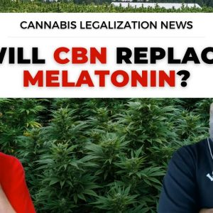 Does CBN Get You High? | CBN Grows in Popularity