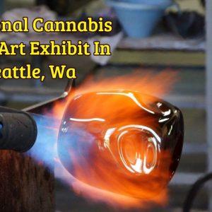 Funtional Cannabis Glass Art Exhibit In Seattle, Wa