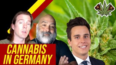 Is Weed Legal in Germany? | Cannabis in Germany