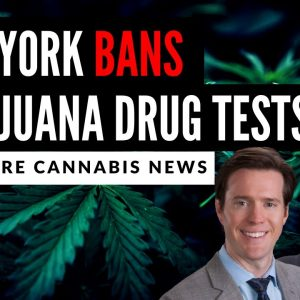 New York Becomes First State to Ban Drug Tests for Marijuana