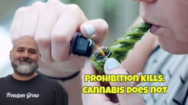 Prohibition Kills, Cannabis Does Not